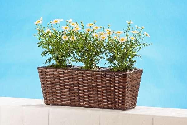 Blumenkasten, Polyrattan 3 Einsätze braun